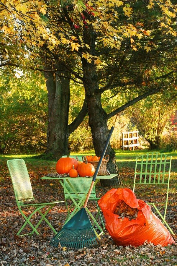 сгребать листьев стоковая фотография