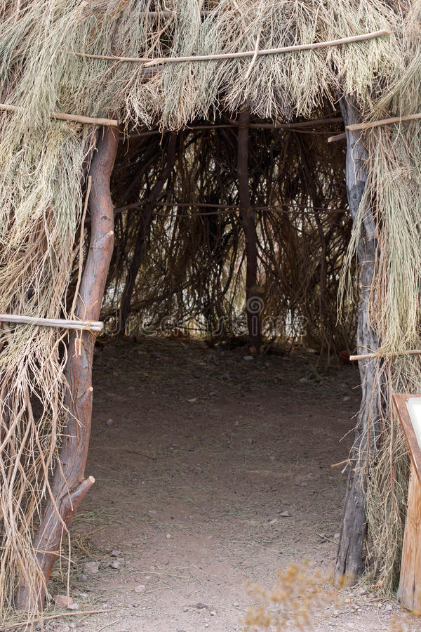 сделанные ветви тройником pee стоковые фото
