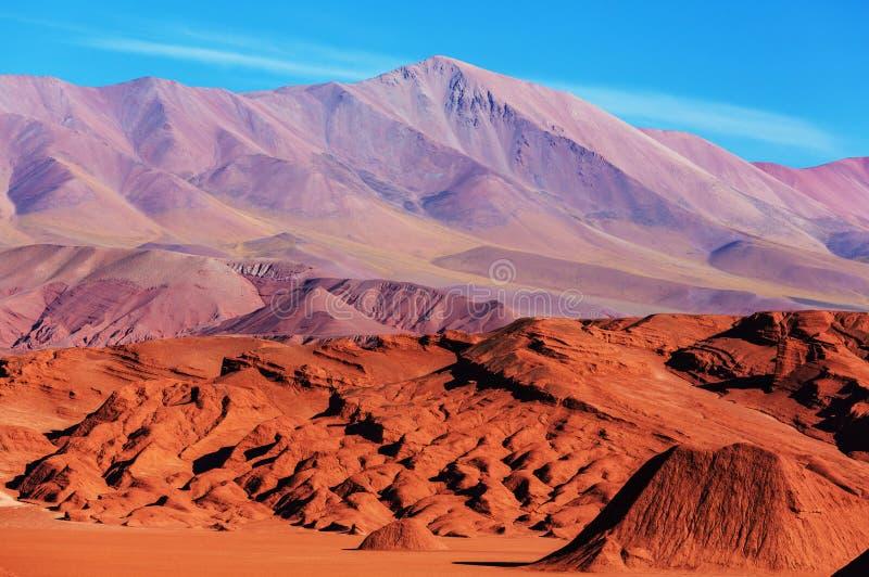 Северная Аргентина стоковые фотографии rf