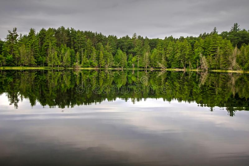 Северная предпосылка природы озера глуш Мичигана стоковое фото