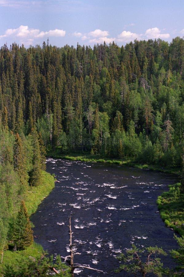 северное река одичалое стоковые изображения rf
