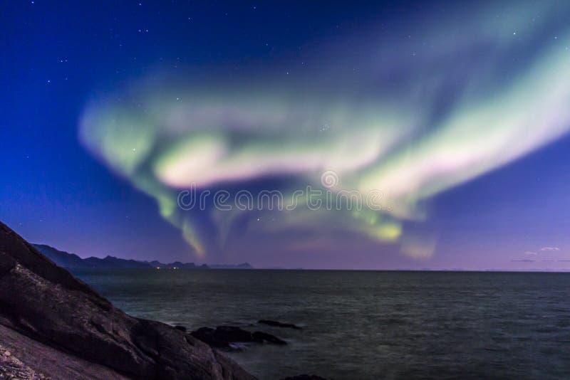 Северное сияние или северное сияние на Lofoten, Норвегии стоковая фотография rf