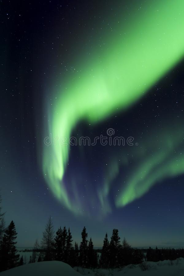 Северное сияние над ледовитой тундрой стоковые изображения