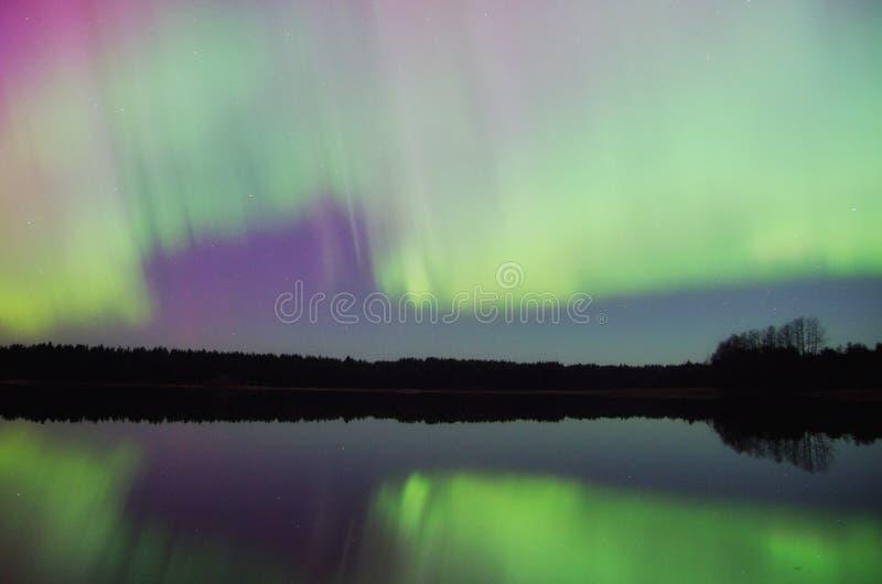 Северное сияние над озером Kaarmise стоковое фото