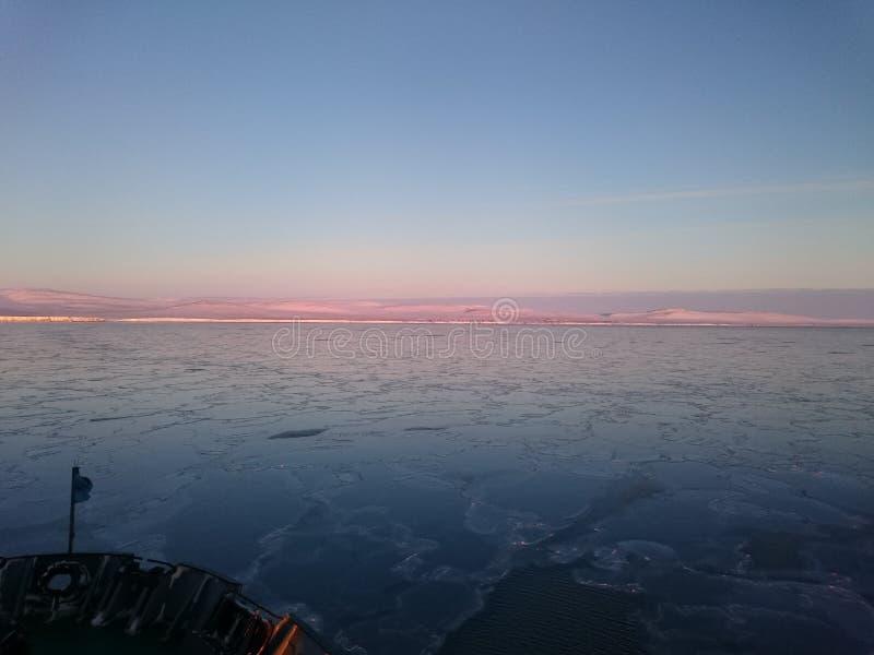 северно Море Rossiya ostrov, Wrangell стоковая фотография rf