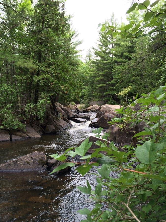Северный водопад Висконсина в лете стоковые изображения rf