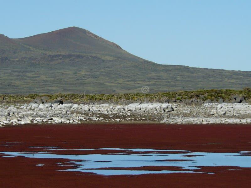 северный patagonia стоковое изображение