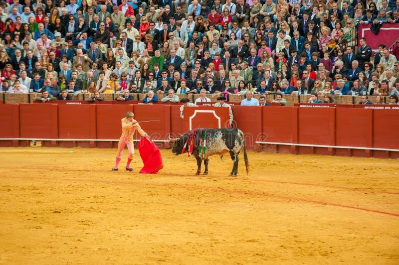 Download СЕВИЛЬЯ, ИСПАНИЯ - 28-ое апреля: Матадор Манюэль Diaz El Cordobes на M Редакционное Фото - изображение насчитывающей зрелищность, выставка: 33739466