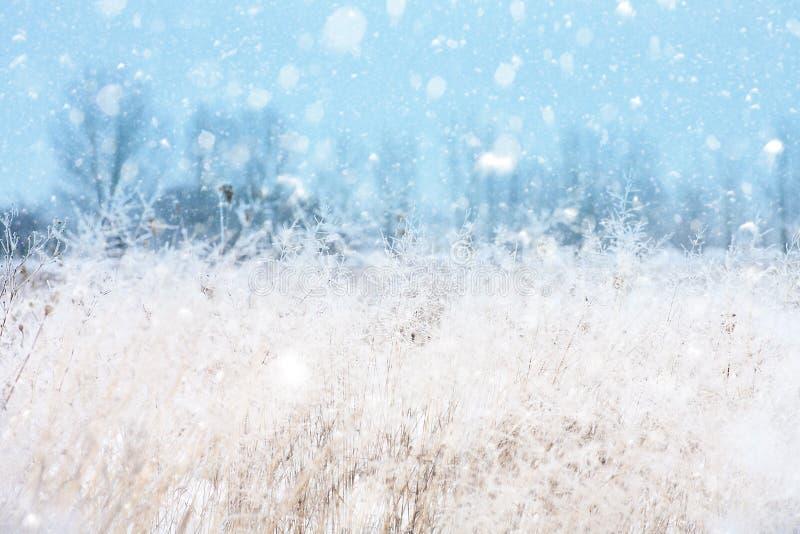 Сезонные предпосылки с снежностями стоковое изображение