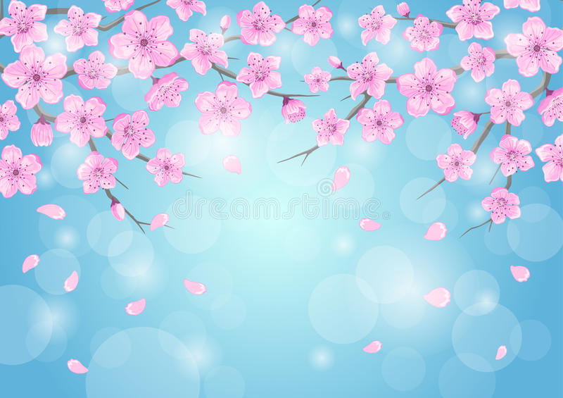 Сезоны приветствуя предпосылку с вишневыми цветами цветут ветви на голубом фоне с bokeh бесплатная иллюстрация