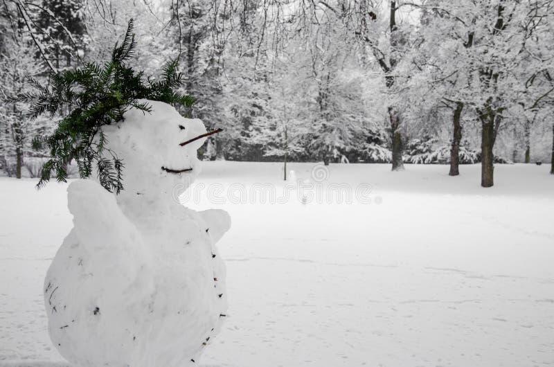 Сезон зимы на дневном времени стоковое изображение rf