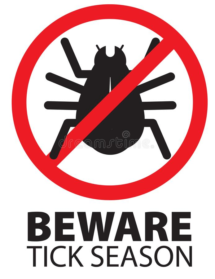 Сезон насекомого тикания остерегает предупреждающий значок знака логотипа иллюстрация штока