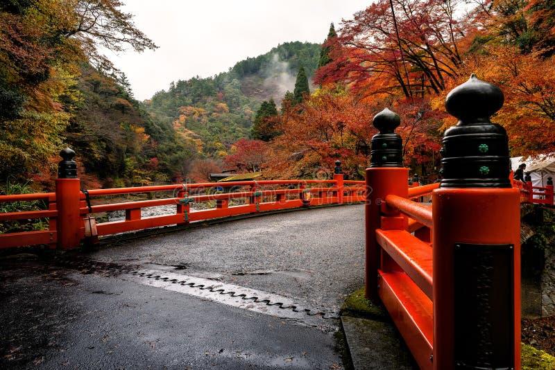 Сезон осени Киото стоковые изображения rf