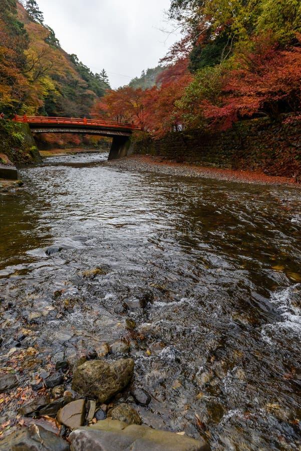 Сезон осени Киото стоковое изображение