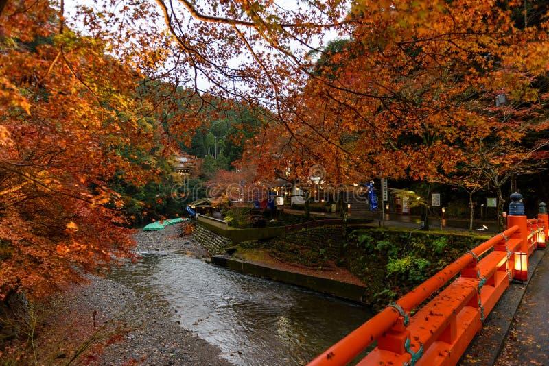 Сезон осени Киото стоковые фотографии rf