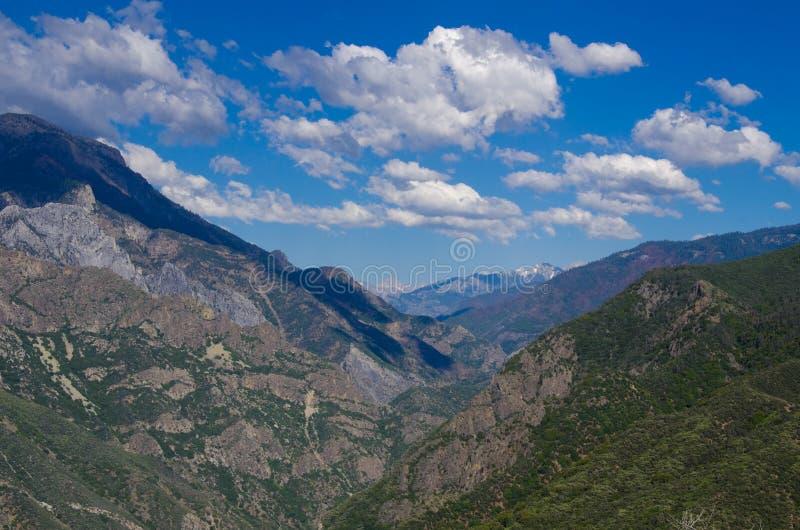 секвойя США пущи california национальная стоковое фото