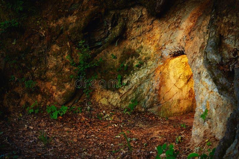 Секретная каменная пещера в темном лесе стоковая фотография