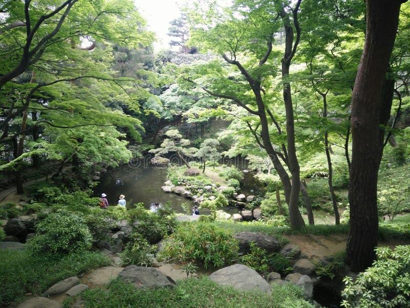 СЕКРЕТНОЕ МЕСТО В ИЕНАХ TOKYO_BY стоковое фото