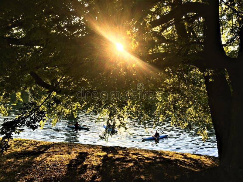 Секретный угол в парке Валентайн, городе Турина, Италии Река По, грести, дерево и луч света стоковые фото