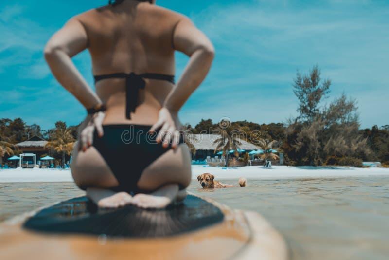 Сексуальное заплывание девушки на доске затвора стоковая фотография