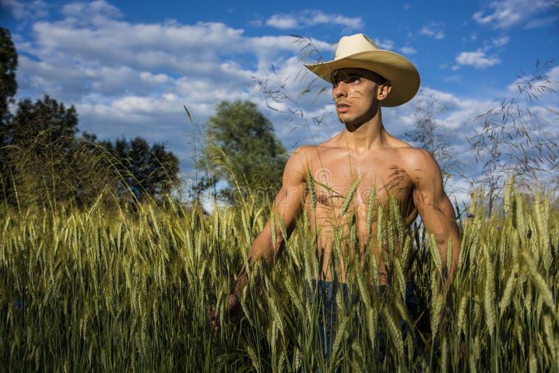 Сексуальный фермер или ковбой рядом с полем сена стоковое фото