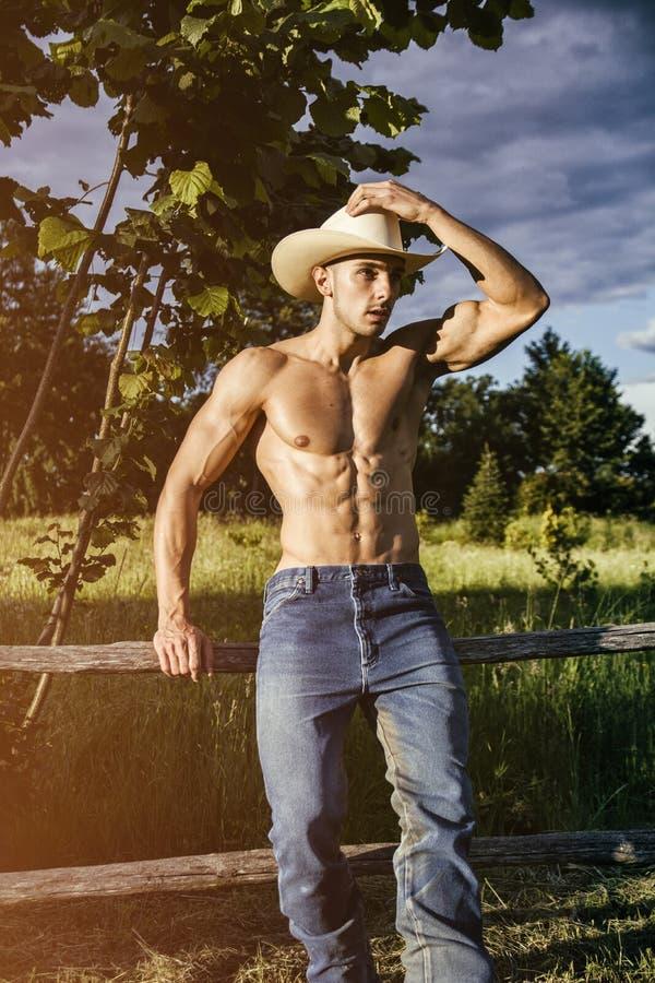 Сексуальный фермер или ковбой рядом с полем сена стоковые изображения rf