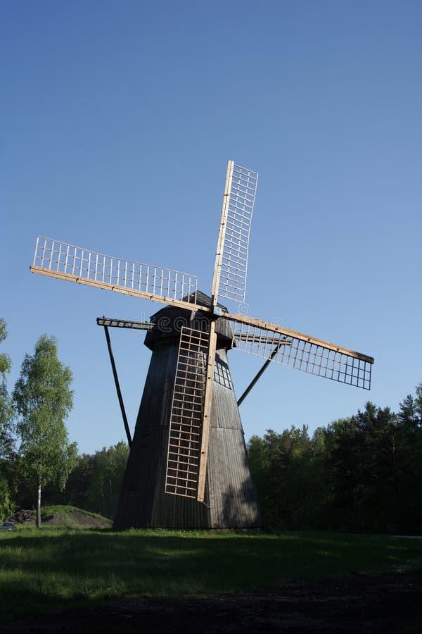 село лета стоковая фотография