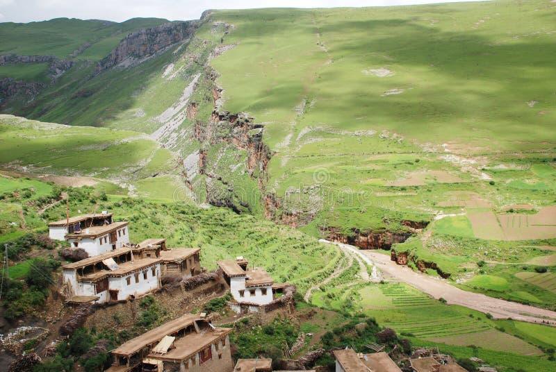 село тибетца выгона стоковое изображение