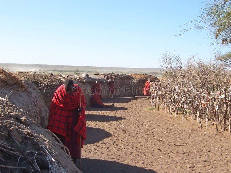 село massai хаты стоковое изображение rf
