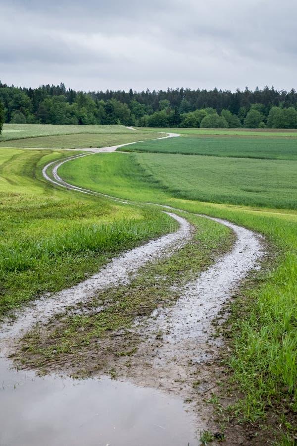 Сельская дорога на дождливый день стоковое фото