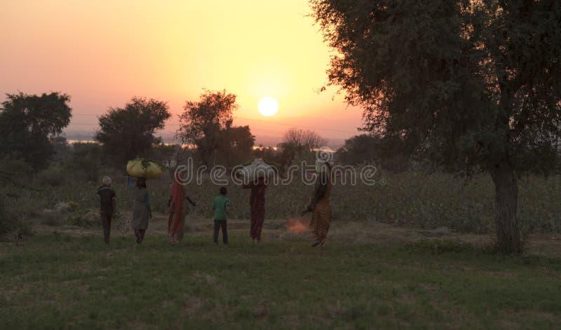 Сельская женщина стоковые фото