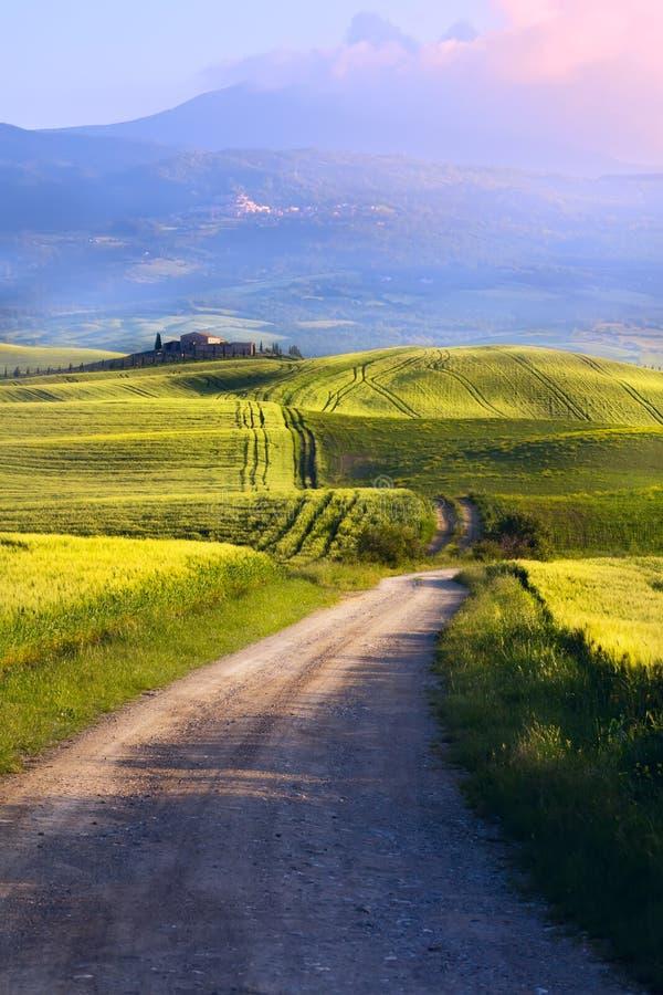 Сельская местность Италии Тосканы; сельскохозяйственное угодье и проселочная дорога к vil стоковая фотография