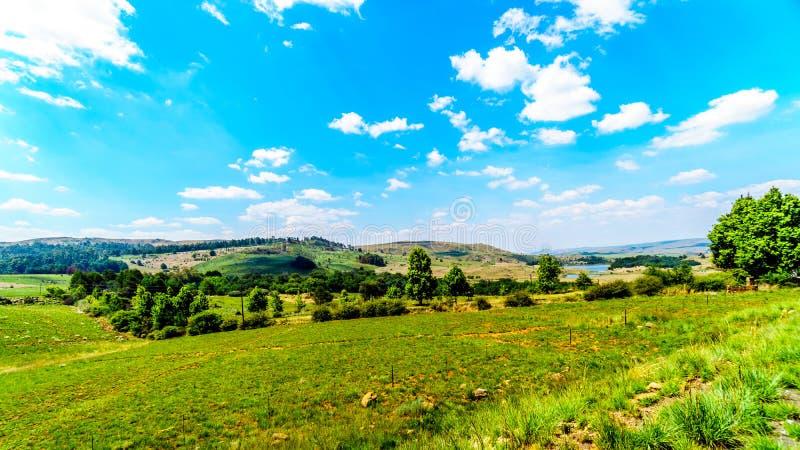 Сельская местность на северном конце шоссе R532, известной трассы панорамы стоковые изображения rf