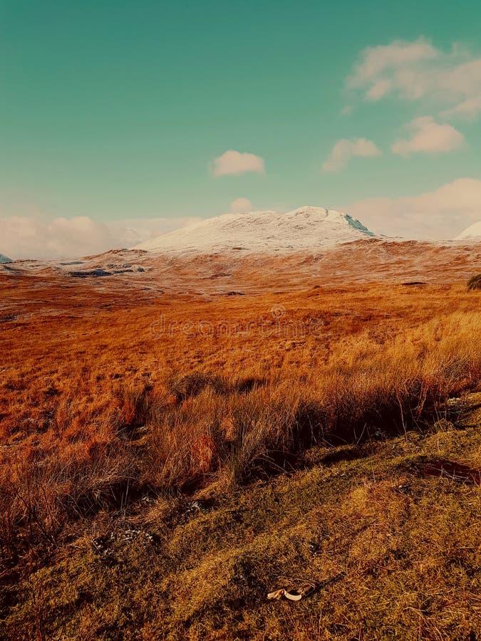 Сельская местность поля гористых местностей стоковые фотографии rf