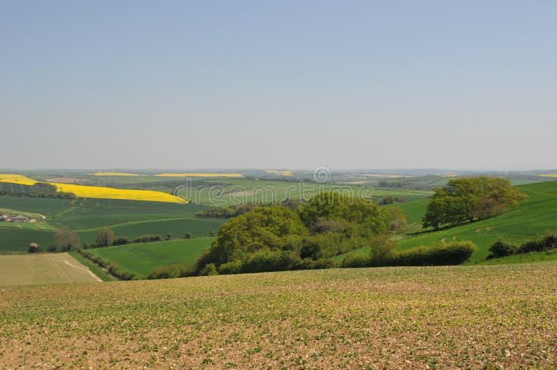 сельская местность dorset стоковое изображение