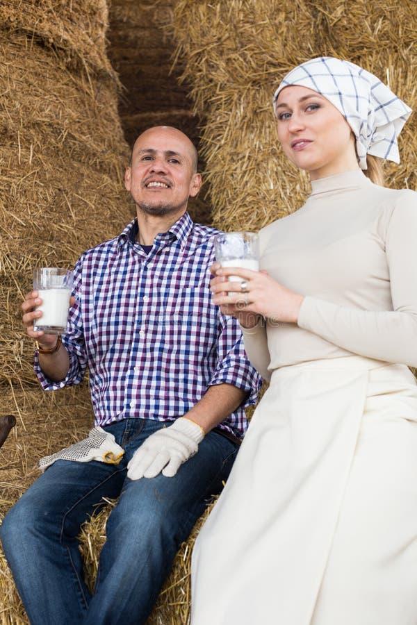 Сельские пары питьевого молока фермеров в сеновале на ферме стоковая фотография
