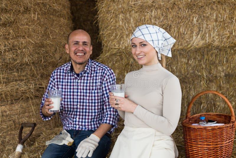 Сельские пары питьевого молока фермеров в сеновале на ферме стоковые фотографии rf