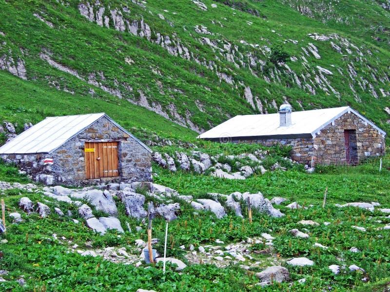 Сельские традиционные фермы архитектуры и поголовья на наклонах горной цепи Alpstein и в долину Thur реки стоковые изображения
