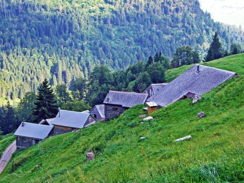 Сельские традиционные фермы архитектуры и поголовья на наклонах горной цепи Alpstein и в долину Thur реки стоковые изображения rf
