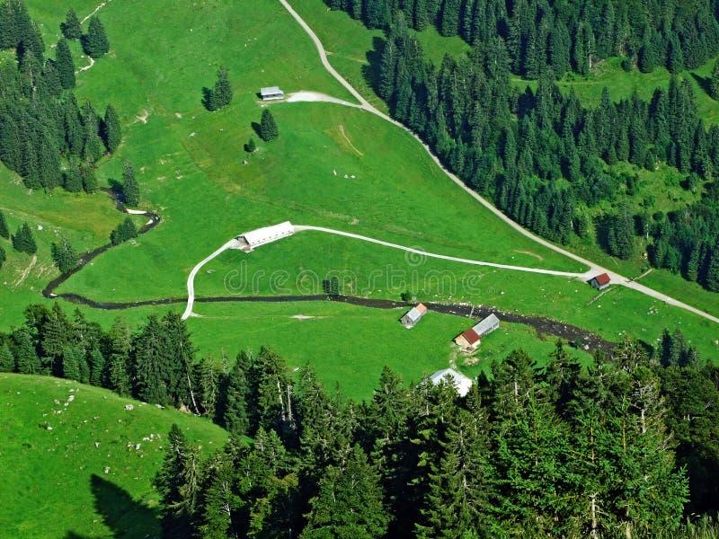 Сельские традиционные фермы архитектуры и поголовья на наклонах горной цепи Alpstein и в долину Thur реки стоковое изображение
