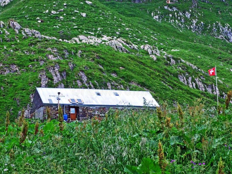 Сельские традиционные фермы архитектуры и поголовья на наклонах горной цепи Alpstein и в долину Thur реки стоковое фото rf
