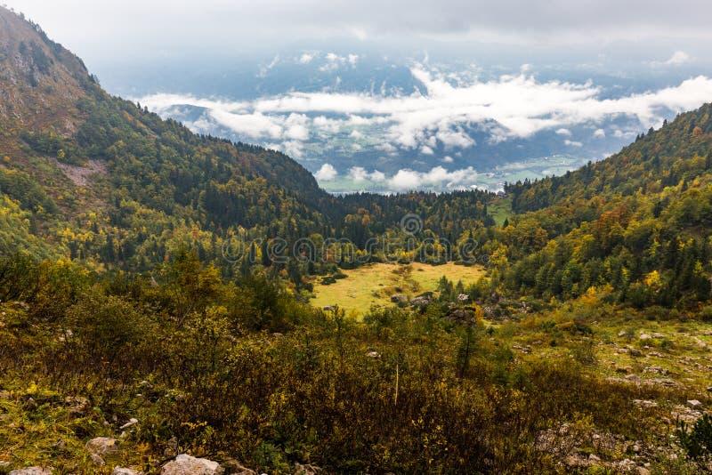 Сельский высокогорный красочный взгляд осени ландшафта луга леса горы стоковое фото rf