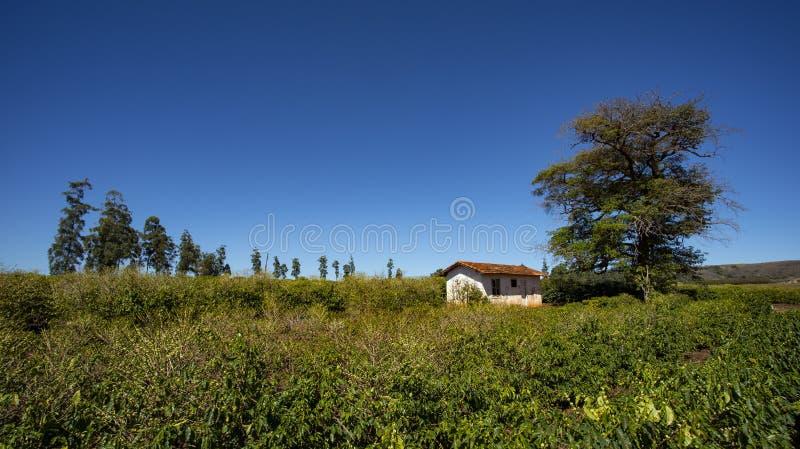 Сельский сельский дом среди аграрного края стоковое изображение