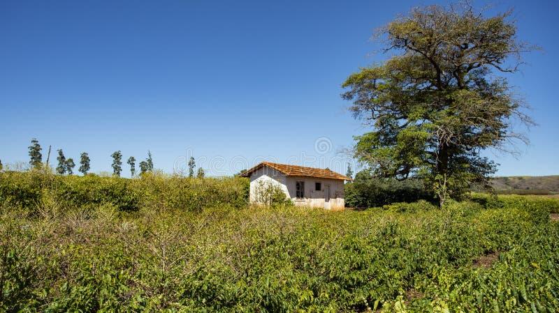 Сельский сельский дом среди аграрного края стоковые изображения rf