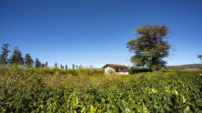 Сельский сельский дом среди аграрного края стоковые изображения