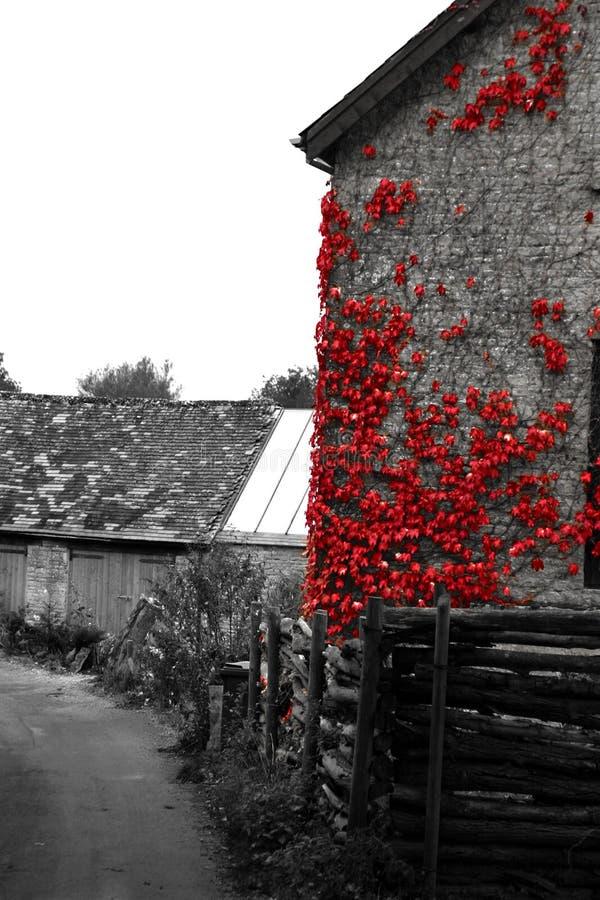 Download сельский дом стоковое изображение. изображение насчитывающей наведенное - 488045