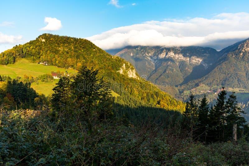 Сельский красочный взгляд осени ландшафта леса горной цепи стоковая фотография