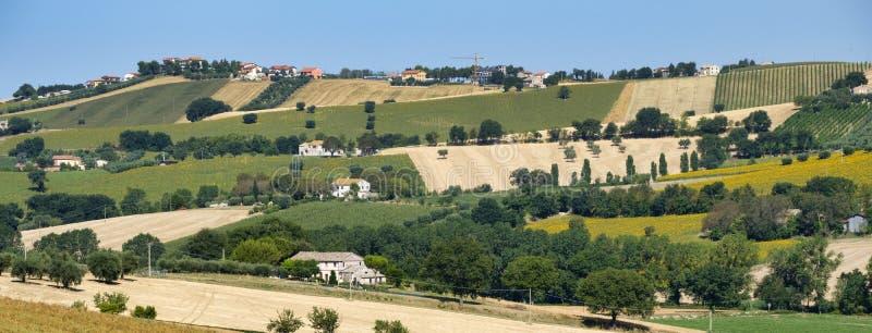 Сельский ландшафт около Recanati Италии стоковые фото