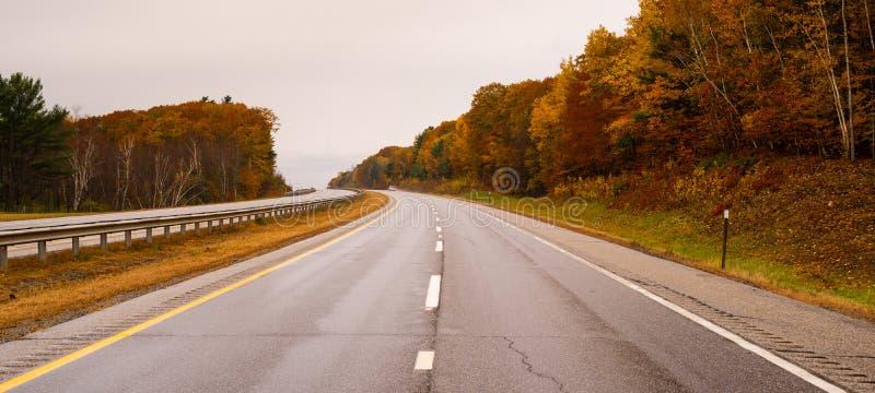 Сельский сезон осени падения проселочной дороги ландшафта выходит изменяя цвет стоковое фото rf
