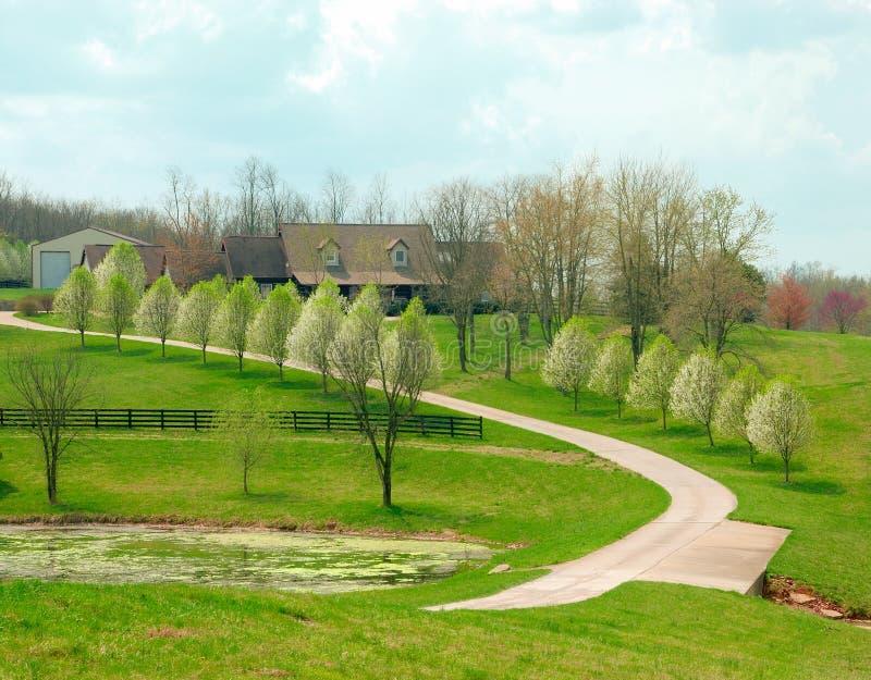 сельскохозяйственне угодье Кентукки сельский стоковые изображения